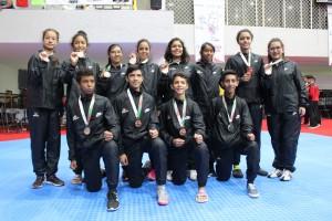 Selección taekwondo